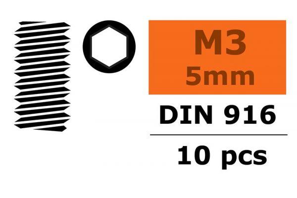 M3x5 Hex Grub Screw (10)